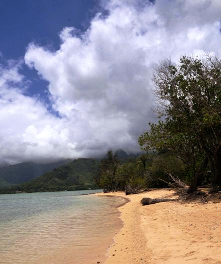 Kualoa Beach Park by Lorrie Morrison